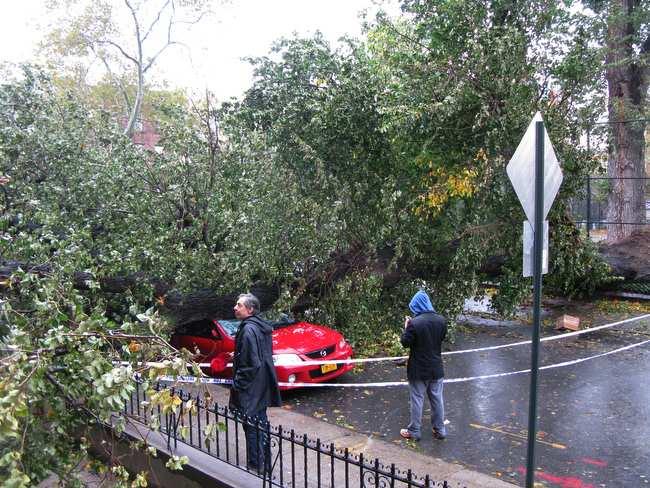 Sandy Storm Int