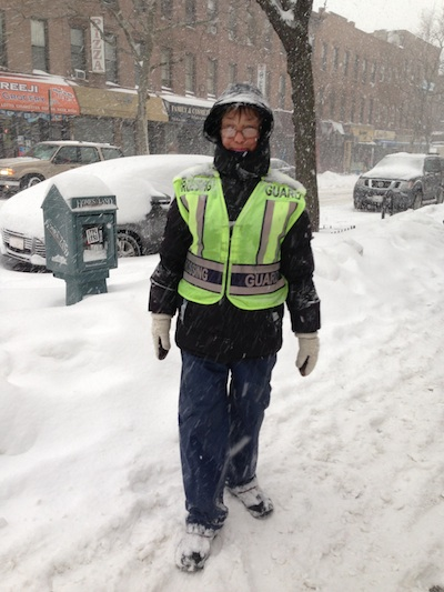 Snow Storm Crossing Guard