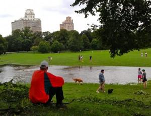Prospect Park's New Pond